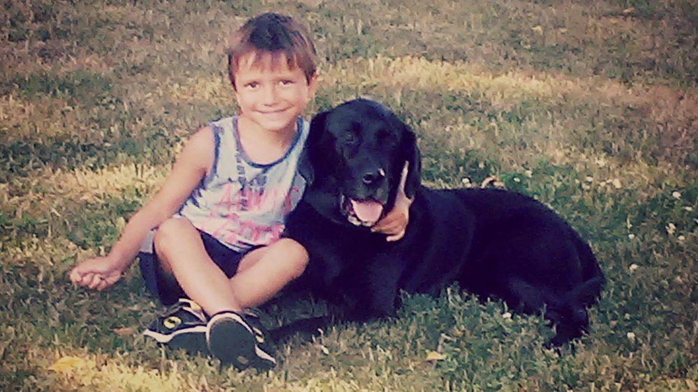 A Kid's Best Friend Dog Training: 210 Casper St, Norwood Young America, MN