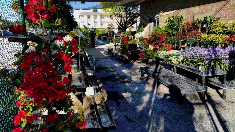 New Growth Gardening: Pinellas Park, FL