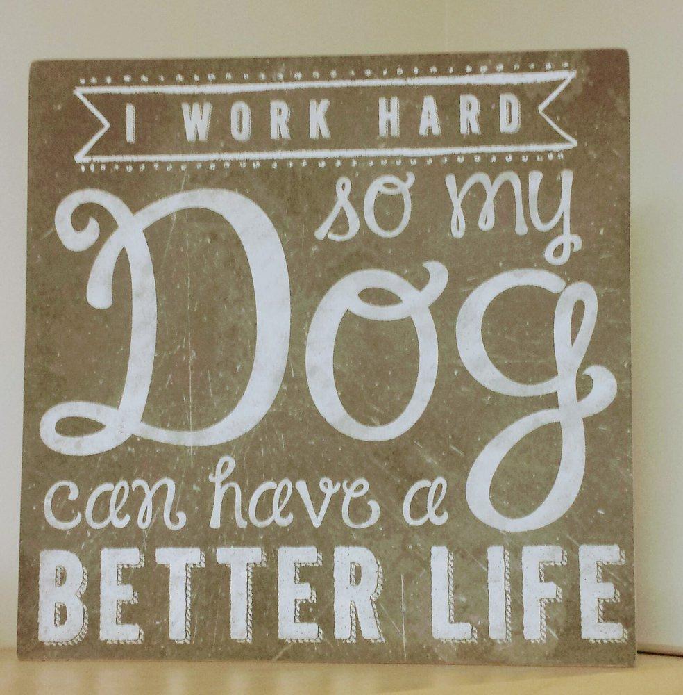 Companion Pet Clinic: 801 S 1st St, Hamilton, MT