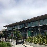 Hamilton recreation center 31 photos 66 reviews recreation centers 1900 geary blvd for Hamilton swimming pool san francisco