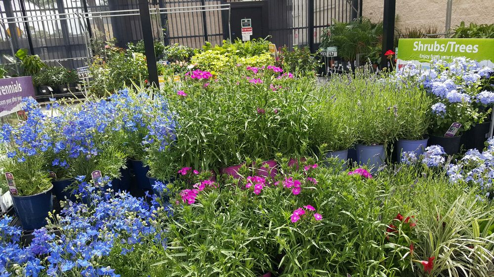 Walmart Garden Center - Nurseries & Gardening - 2500 W