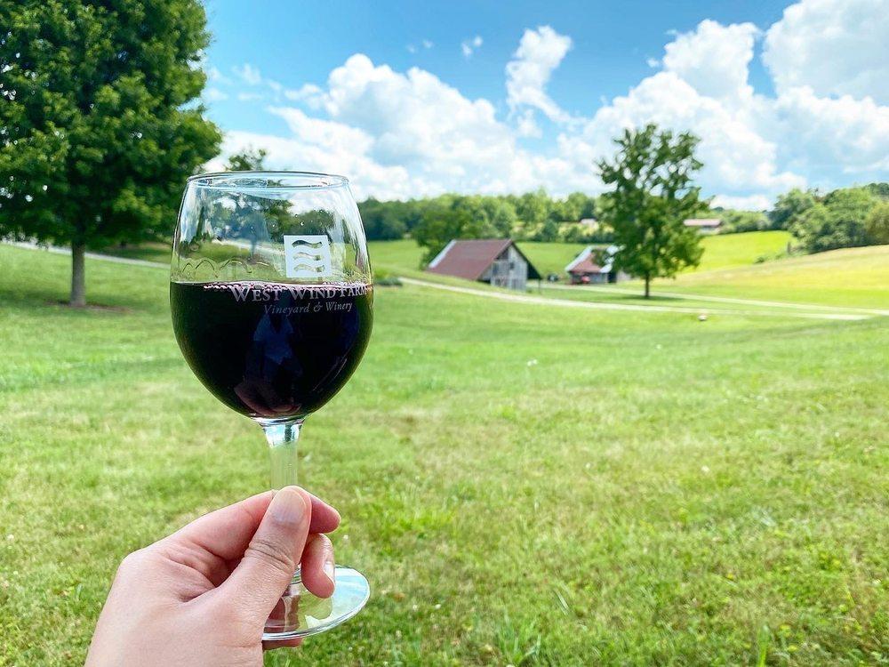 West Wind Farm Vineyard & Winery: 180 W Wind Dr, Max Meadows, VA