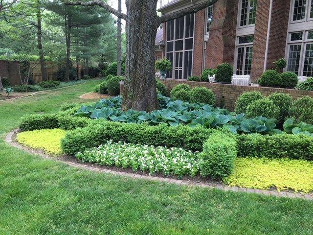 Photo of Handyman Connection of Lexington - Lexington, KY, United States. Landscape  design - Landscape Design After Maturity. - Yelp