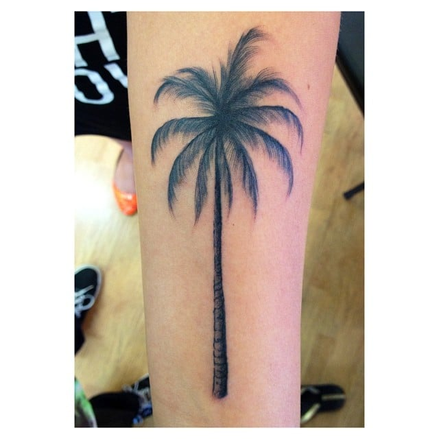 Florida Palm Tree Tattoo: Palm Tree By Anthony.