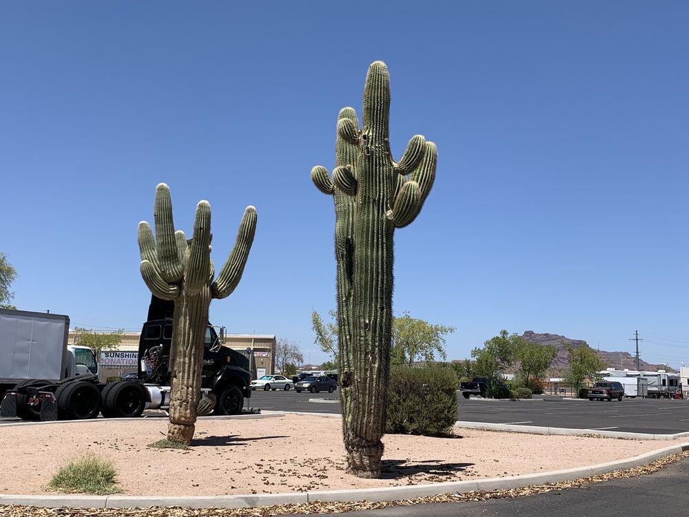 Sunshine Acres Children's Home: 3405 N Higley Rd, Mesa, AZ