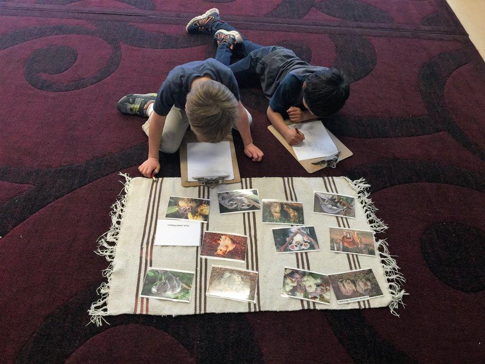 Empire Montessori Preschool