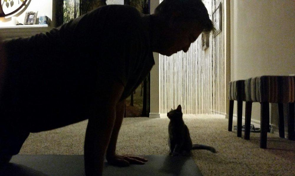 Homestretch Yoga: 620 Ranch Rd, Austin, TX