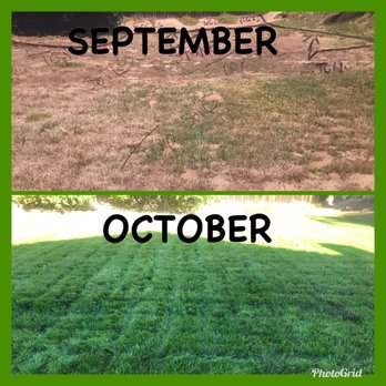 Lawn Aeration Facts   CLOSED   18 Reviews   Lawn Services ...