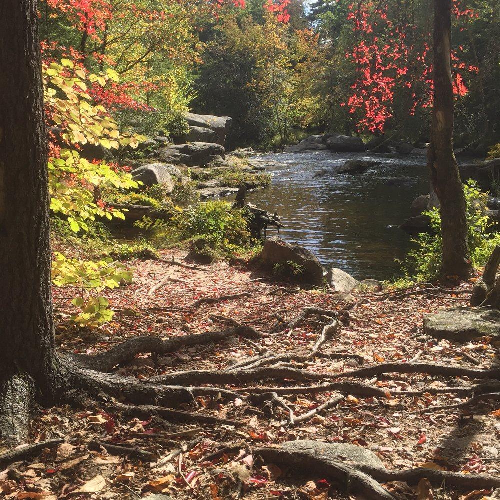 Wildcat Falls Conservation Area: 31 Currier Rd, Merrimack, NH