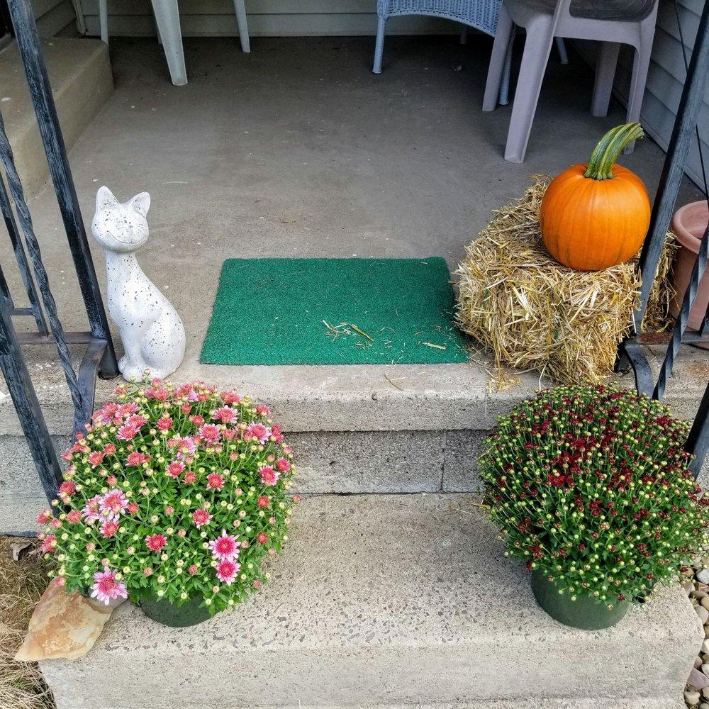 Gilmore's Greenhouse Florist: 2774 Virginia Ave SE, Warren, OH