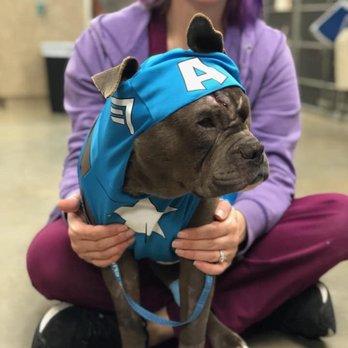 Central Texas Veterinary Specialty & Emergency Hospital - 92