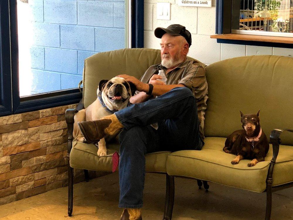 BnB Pet Retreat: 210211 E SR 397, Kennewick, WA