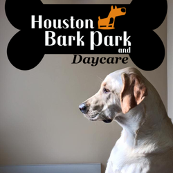 Dog Boarding Houston Heights