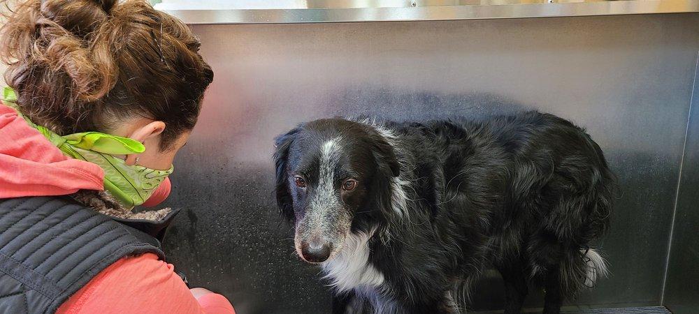 Lemos Feed & Pet Supply: 8405 El Camino Real, Atascadero, CA