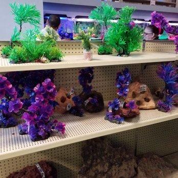 Photo Of Trop Aquarium Las Vegas Nv United States