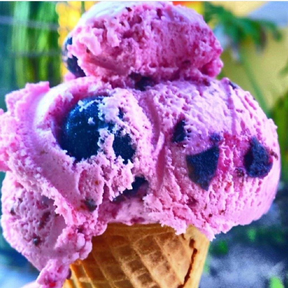 The Fat Donkey Ice Cream & Fine Desserts: 1098 E Eau Gallie Blvd, Indian Harbour Beach, FL