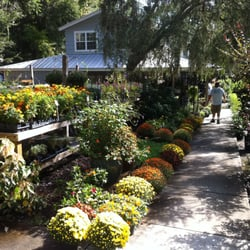 Attractive Photo Of Garden Gate Nursery   Gainesville, FL, United States. ANNUALS AND  PERENNIALS