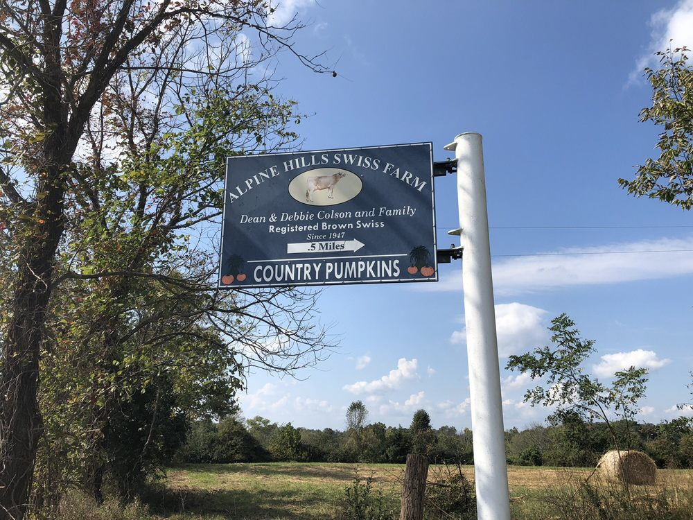 Country Pumpkins