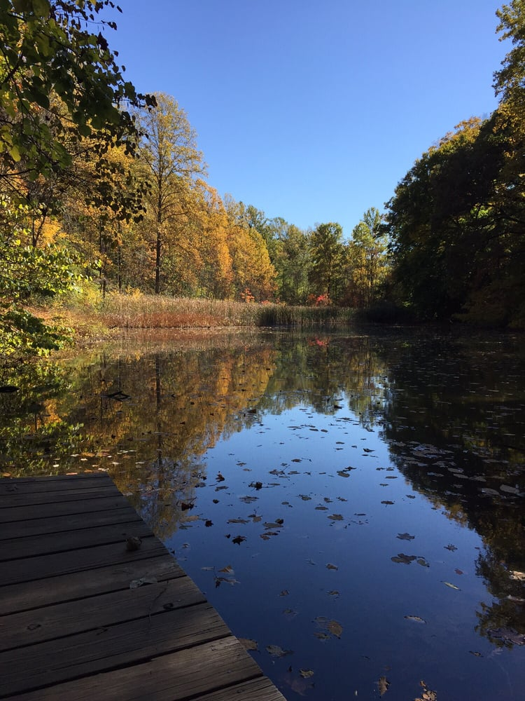 Fernwood Botanical Garden and Nature Preserve: 13988 Range Line Rd, Niles, MI