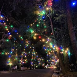 Christmas Tree Lane.Christmas Tree Lane 127 Photos 95 Reviews Christmas