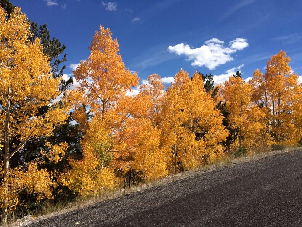 The Getaway Cabin: Great Basin National Park, Baker, NV