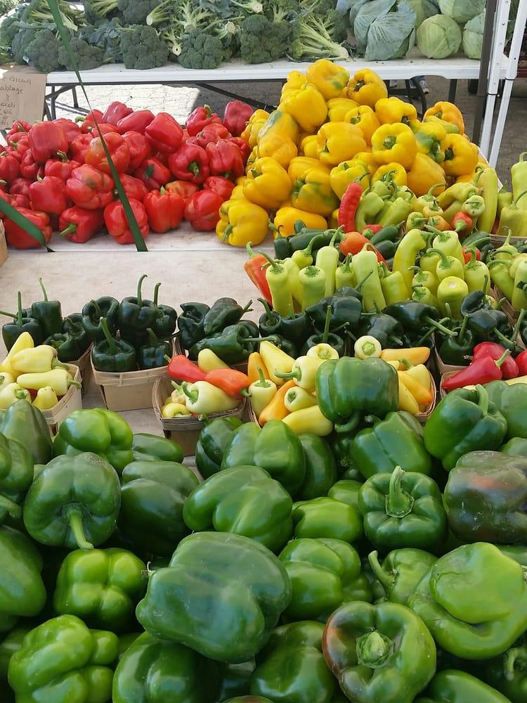 Northville Farmers' Market: Corner Of 7 Mile And Sheldon, Northville, MI