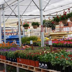 Photo Of Green Acres Nursery Supply Folsom Ca United States Our