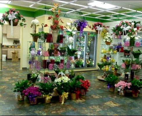 Patrick afb flower shop closed florists 1221 s for Flower shop design layouts