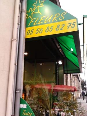 florence fleurs - florists - 137 bd albert 1er, bordeaux, france