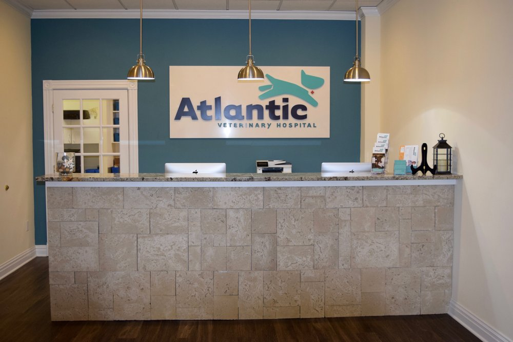 Atlantic Veterinary Hospital: 2405 State Rte 71, Spring Lake Heights, NJ