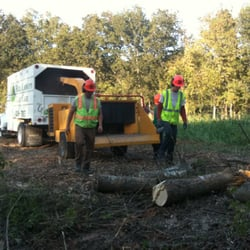 Photo of Full Canopy Tree Care - Austin TX United States. Skilled Tree & Full Canopy Tree Care - 15 Photos - Tree Services - Austin TX ...