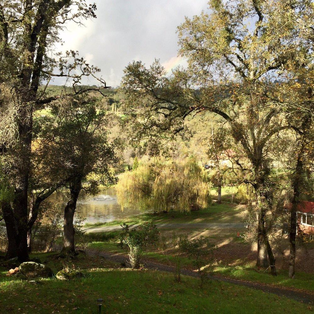 Sivananda Ashram Yoga Farm: 14651 Ballantree Ln, Grass Valley, CA