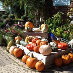 Photo Of Garden Gate Nursery   Hartland, WI, United States. Fall Is In