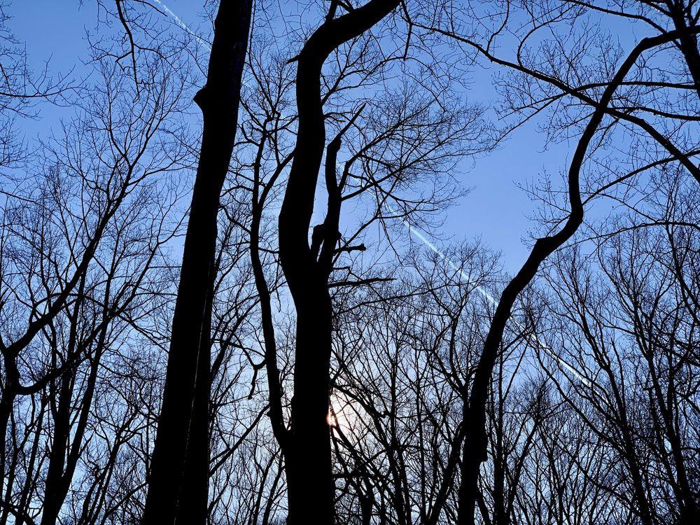 Linn Run State Park: 770 Linn Run Rd, Rector, PA