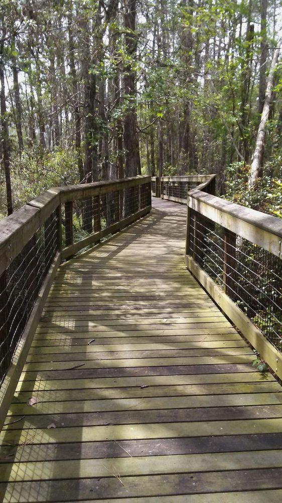 Morningside Nature Center: 3450 E University Ave, Gainesville, FL