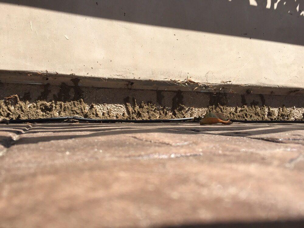 Casa Blanca Termite Control: West Hills, CA
