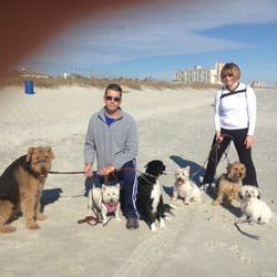 Photo Of Pack Patriots Dog Boarding And Training Myrtle Beach Sc United