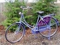 Jolly Bike: Arlington, MA