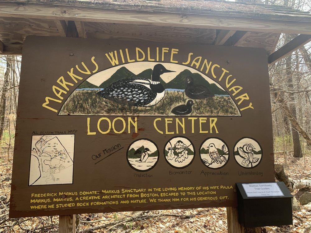 The Loon Center & Markus Wildlife Sanctuary: 183 Lee's Mills Rd, Moultonborough, NH