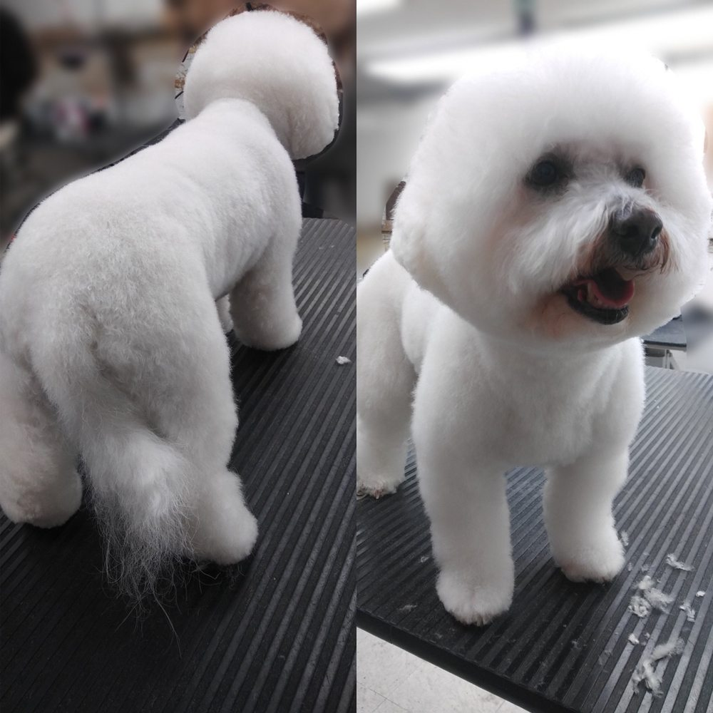 Vanity Fur