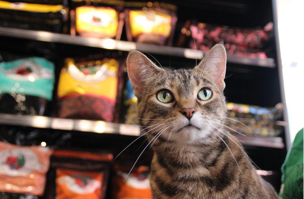 Chuck & Don's Pet Food & Supplies: 1444 N Maize, Wichita, KS