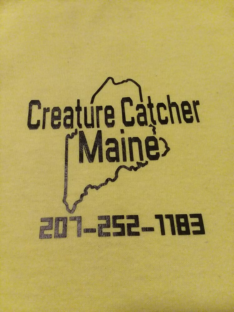 Creature Catcher Maine: Sanford, ME