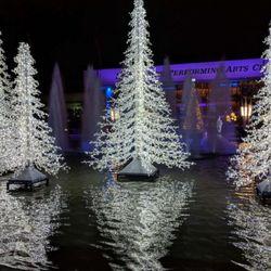 Photo Of Cielo Long Beach Ca United States Lighting Xmast Tree