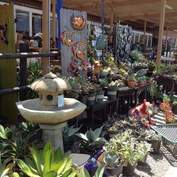 Armstrong Garden Centers 20 Photos 26 Reviews Nurseries