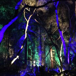 Adventure time southern california a yelp list by - Descanso gardens enchanted forest of light ...