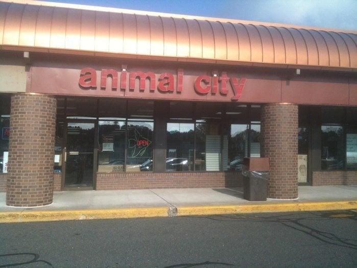 Animal City: 35 Talcottville Rd, Vernon Rockville, CT