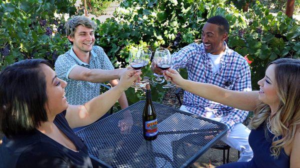 Rutas De Napa Wine Tours