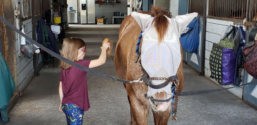 Brevard Equestrian Center: 4850 Old Dixie Hwy, Grant, FL