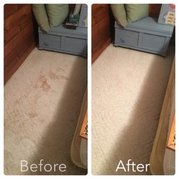 Steamology Carpet Amp Tile Cleaning Request A Quote 25