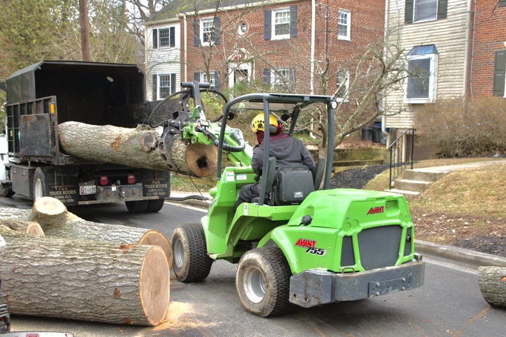 Milton's Tree Care Services: Upper Marlboro, MD